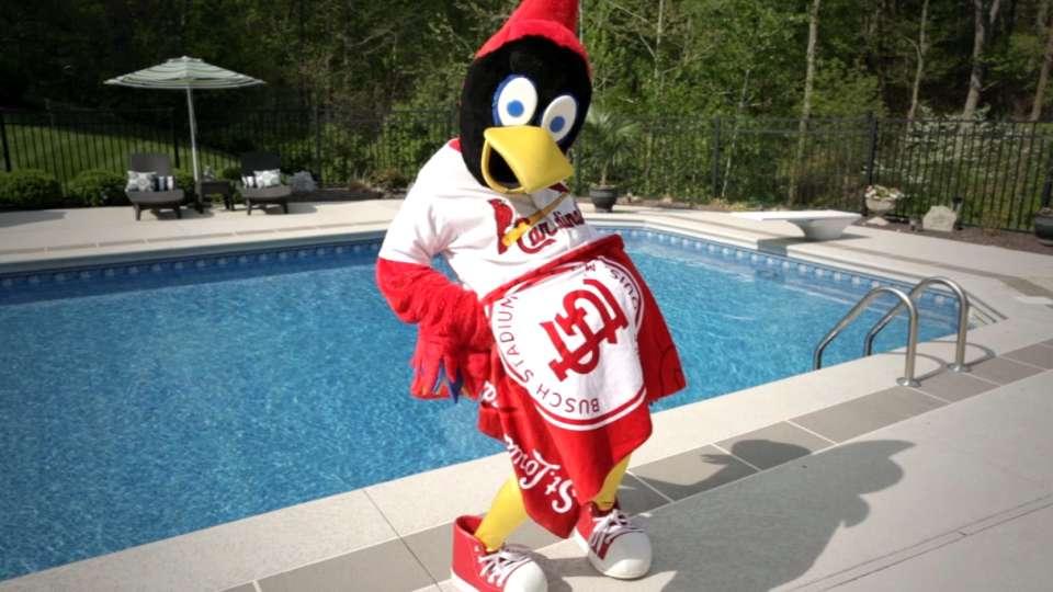Cardinals beach towel