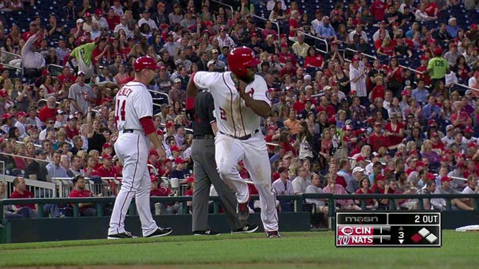 Rendon's sac fly
