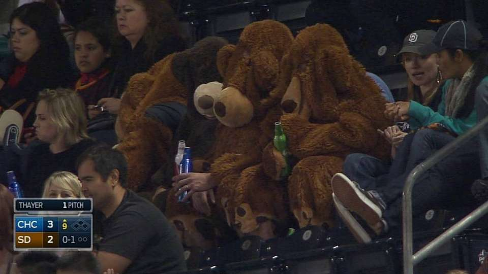 Broadcast spots bears in stands