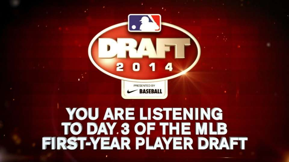 Ripken drafted by Nationals