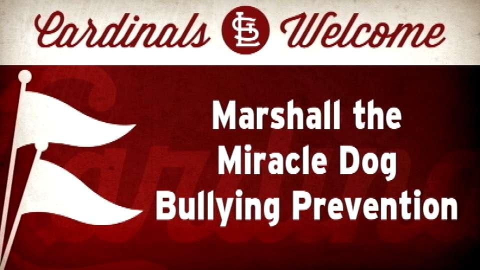 090114 MARSHALL MIRACLE DOG
