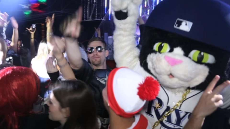 Image result for dj kitty rays