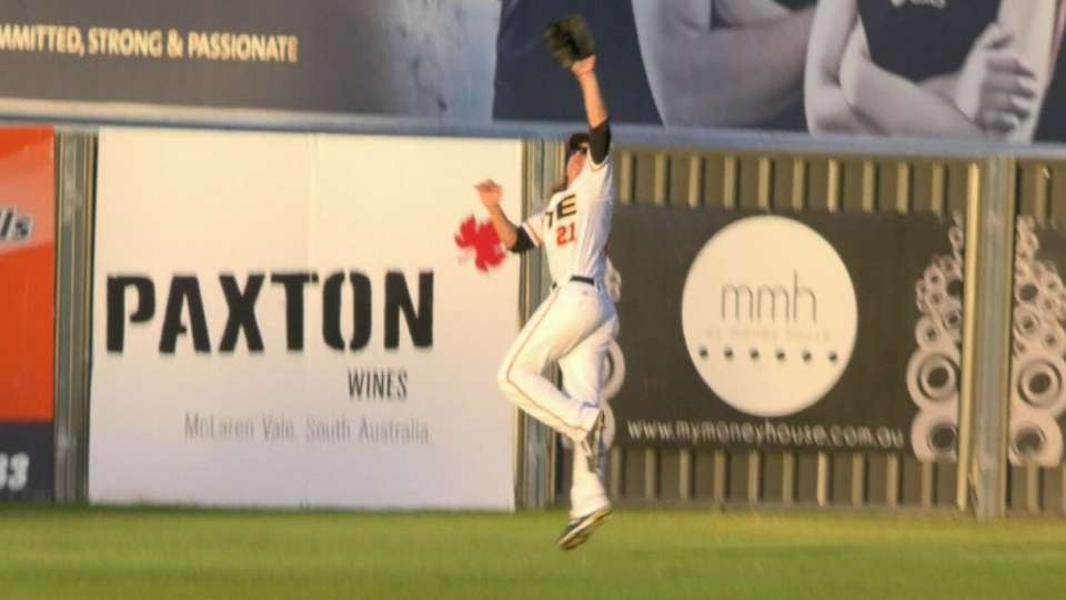 Lodge's leaping catch