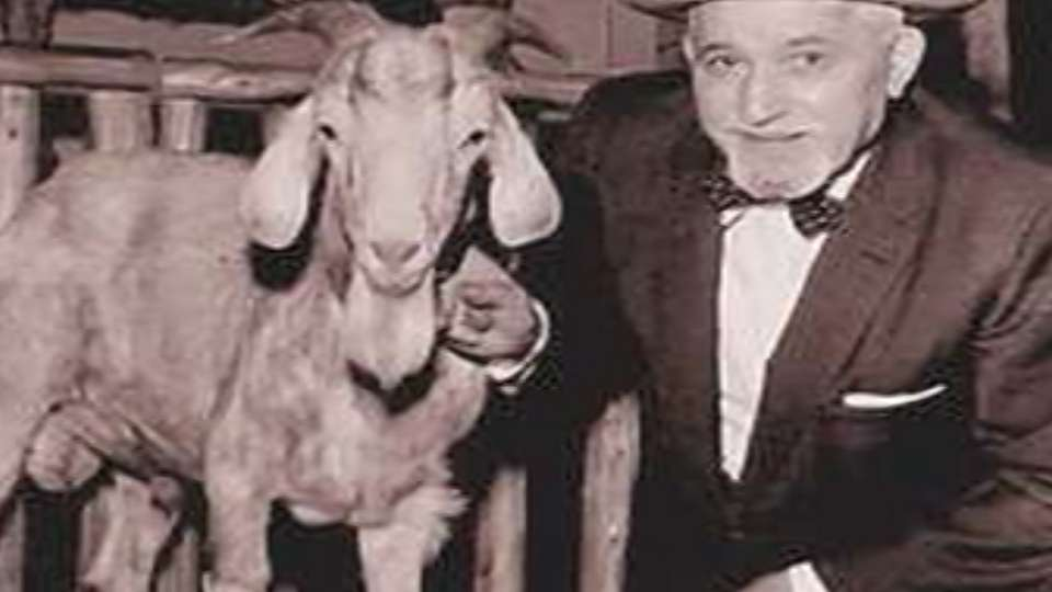 Curse of the Billygoat?