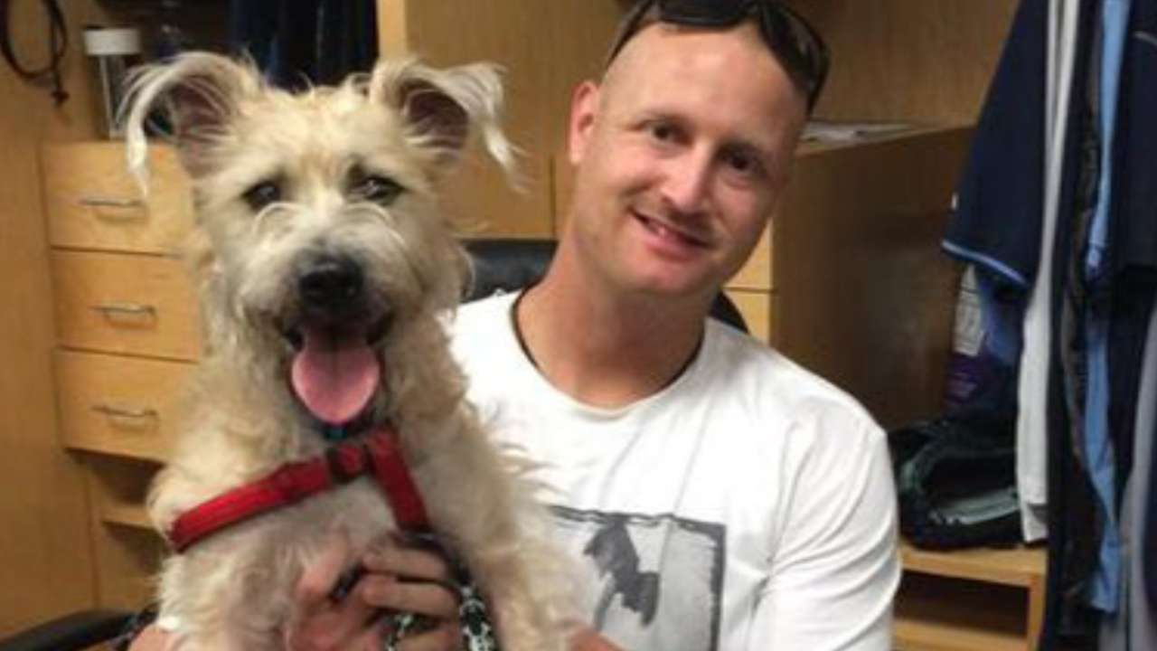 Alex Cobb is adopting that adorable stray dog he found at Spring