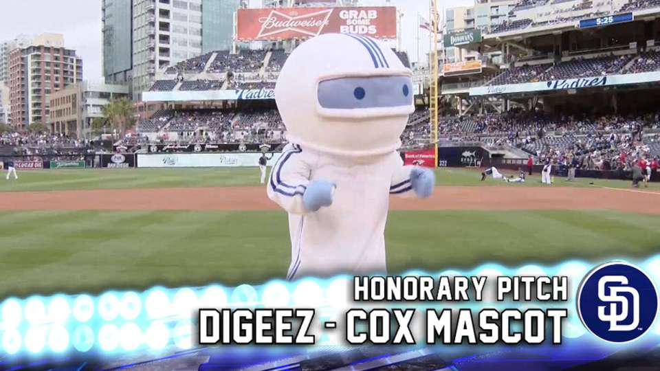 Diggez's Honorary Pitch
