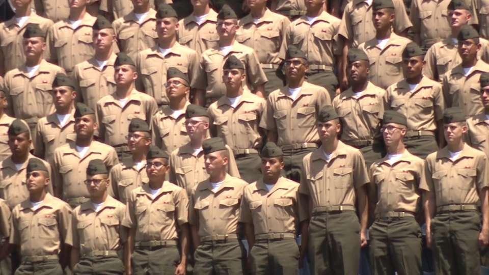 Marine Recruit Salute