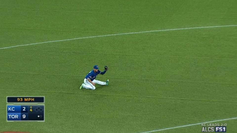 Donaldson snags liner