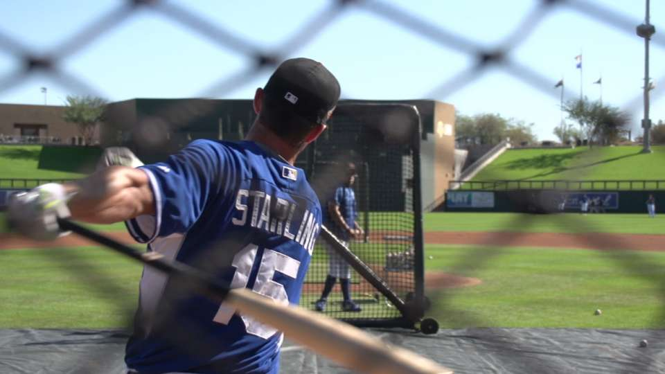 Starling on second year in AFL