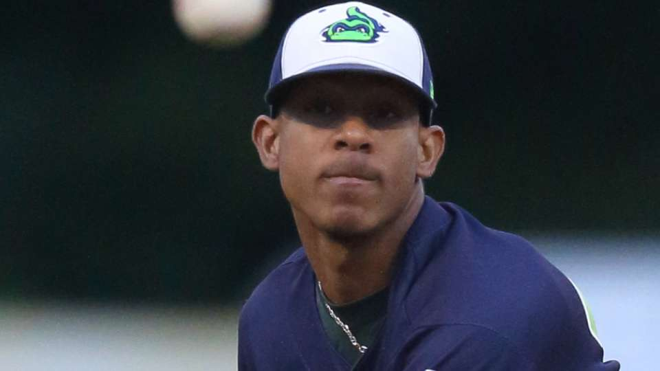 Top Prospects: Torres, SD