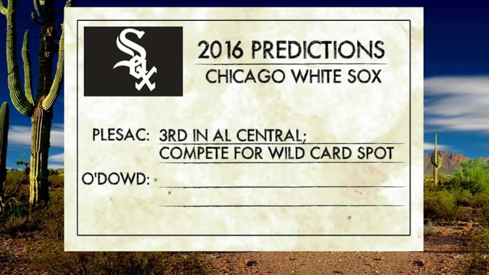 Predictions for 2016 White Sox