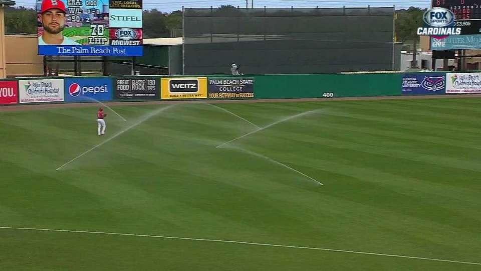Sprinklers delay the game