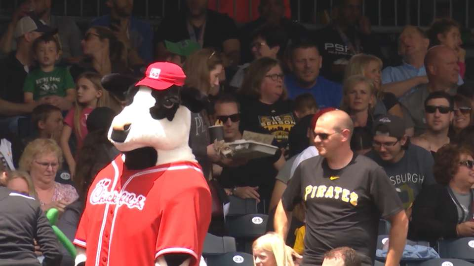 Spot The Cow at PNC Park