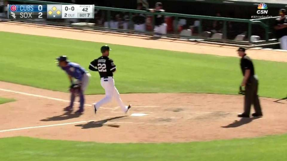 Anderson's sac fly