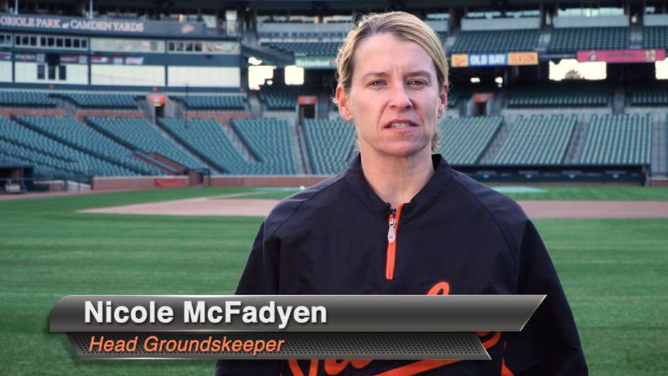Oriole Park Sod Replacement