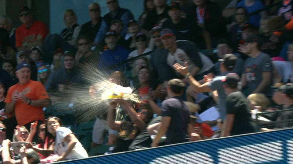 Goldschmidt foul hits fan's food