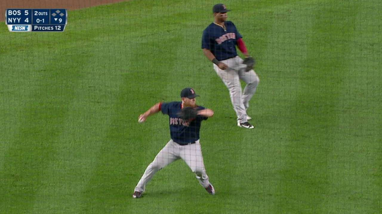Two amateur cubs nailing