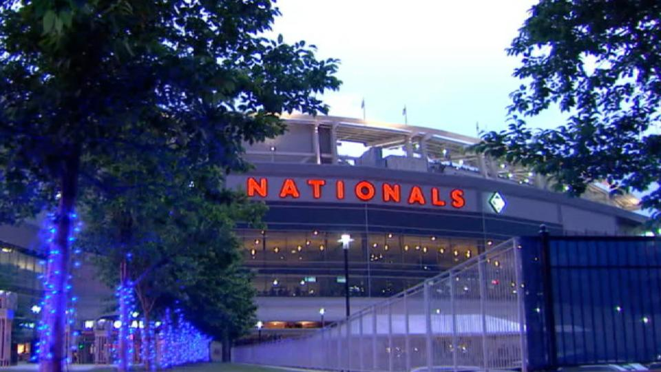 Yanks' game vs. Nats suspended