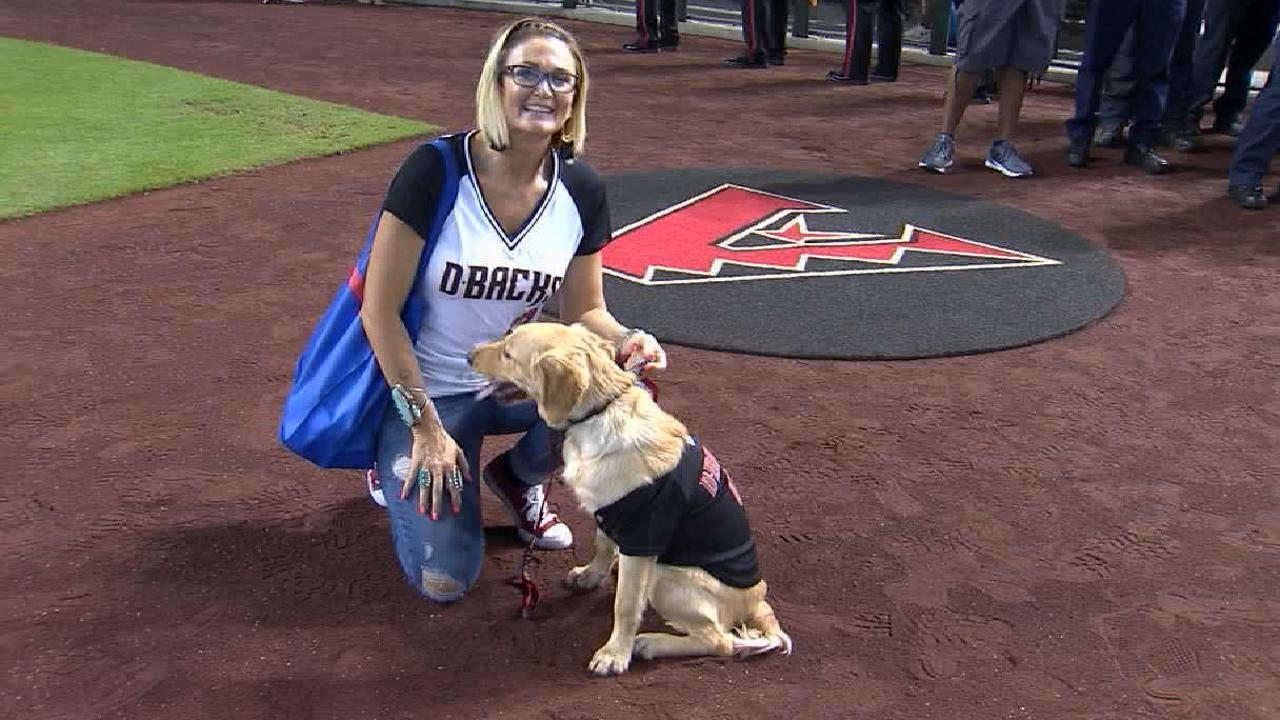 Diamondbacks honor dog who saved owner from rattlesnake