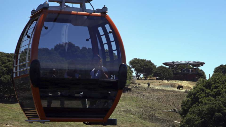 A's to use gondola at new park